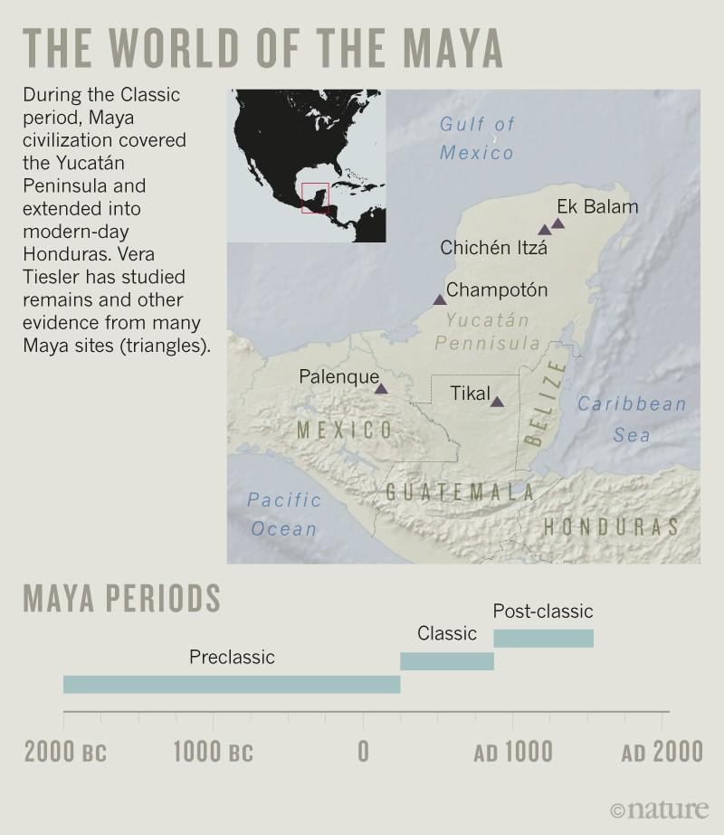 Maya bones bring a lost civilization to life