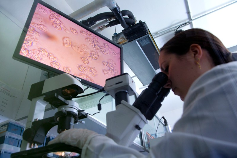 Low angle view of a female researcher looking through a microscope with magnified image of virus shown on a monitor