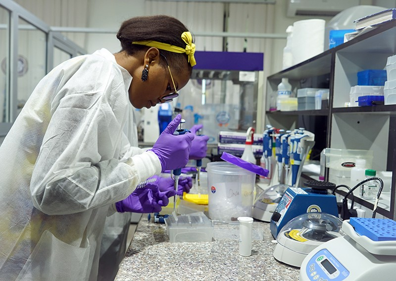 Grad students using one of the CRISPR tests in Nigeria.