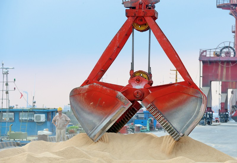 A crane bucket transfers animal feed made from soybeans imported from Brazil to China