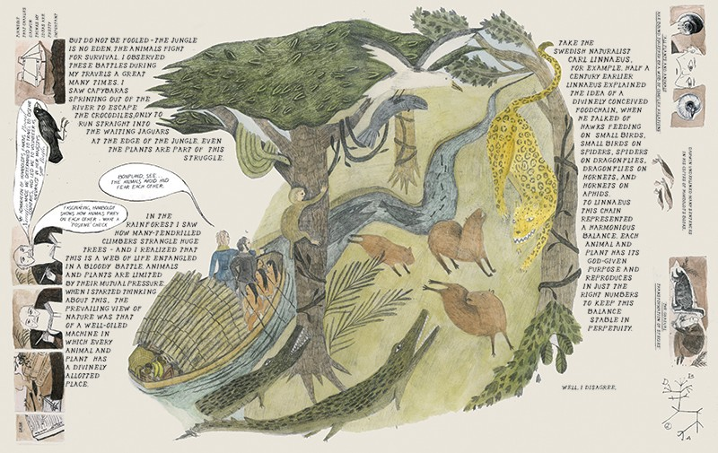Graphic spread showing Humboldt travelling in a rainforest