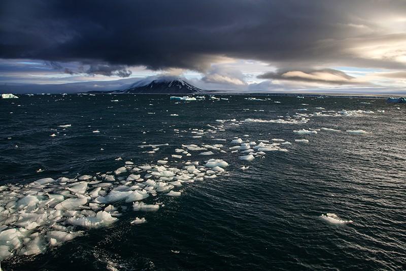 Hundreds of thousands of marine viruses discovered in world's oceans