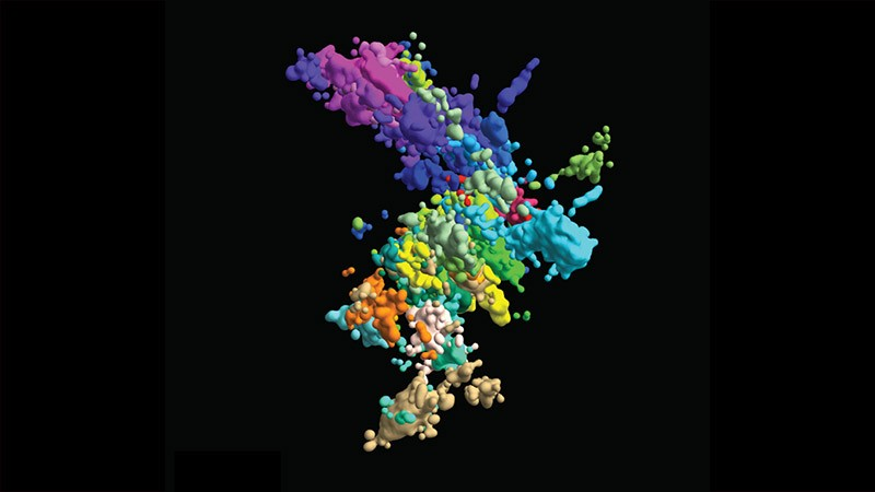 multicoloured image of chromatin's structure
