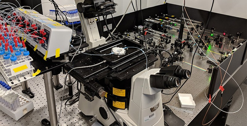 A super-resolution microscopy system for imaging chromatin.