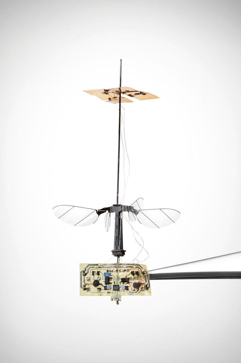 Літаючий автомобіль комах