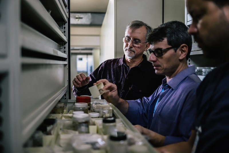 Paulo Buckup and Alexandre Pimenta examine holotype mollusk specimens rescued from the fire at the Nation Museum.