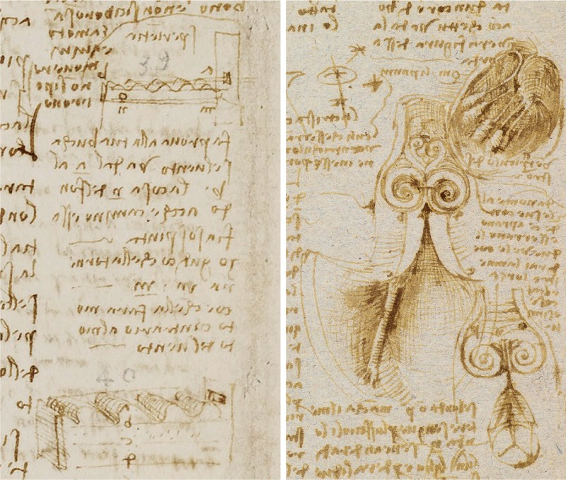 Details of two of Leonardo da Vinci's sketches