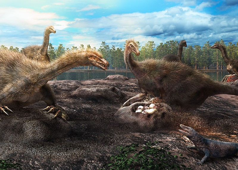 Artist's rendition of a dinosaur nesting colony