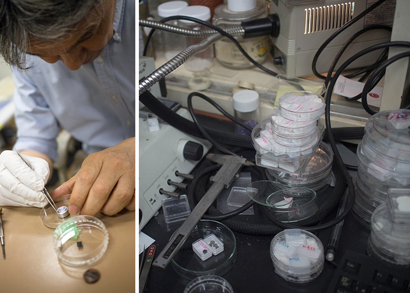 Left, Kenji Watanabe prepares a sample of hBN crystals for analysis; Right, samples of hBN sit in plastic trays.