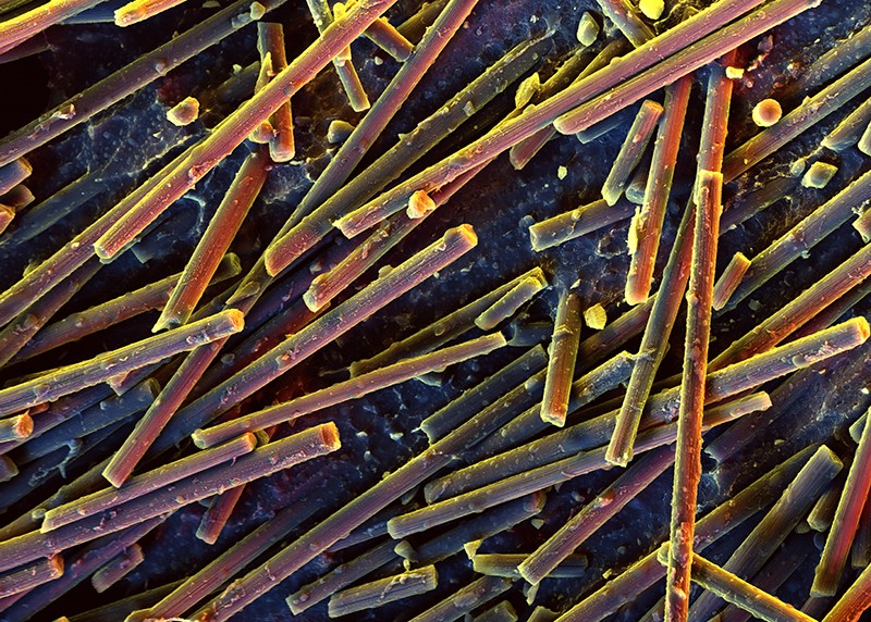 Carbon nanotubes in POM matrix, SEM