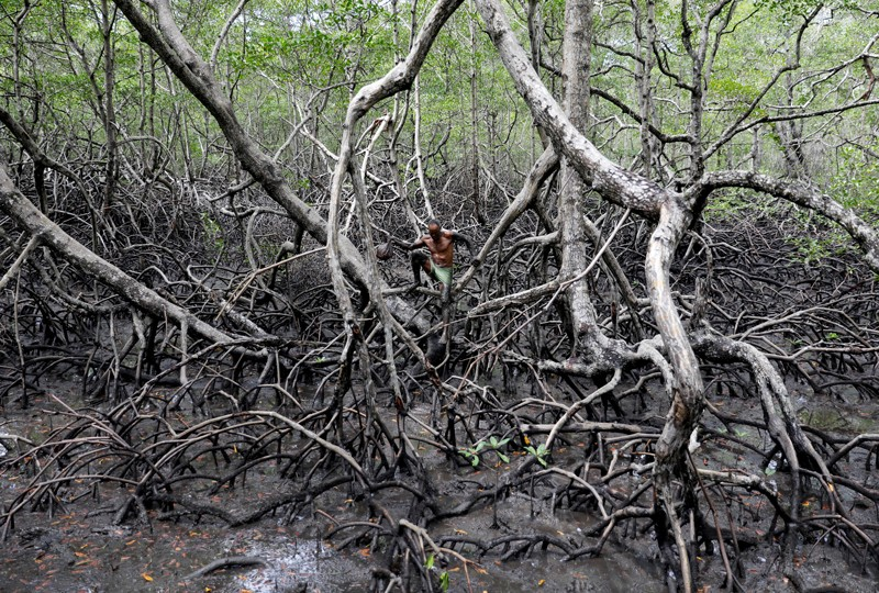 Fisherman Jose da Cruz walks holding a sack filled with crabs he caught at mangrove forests, Brazil