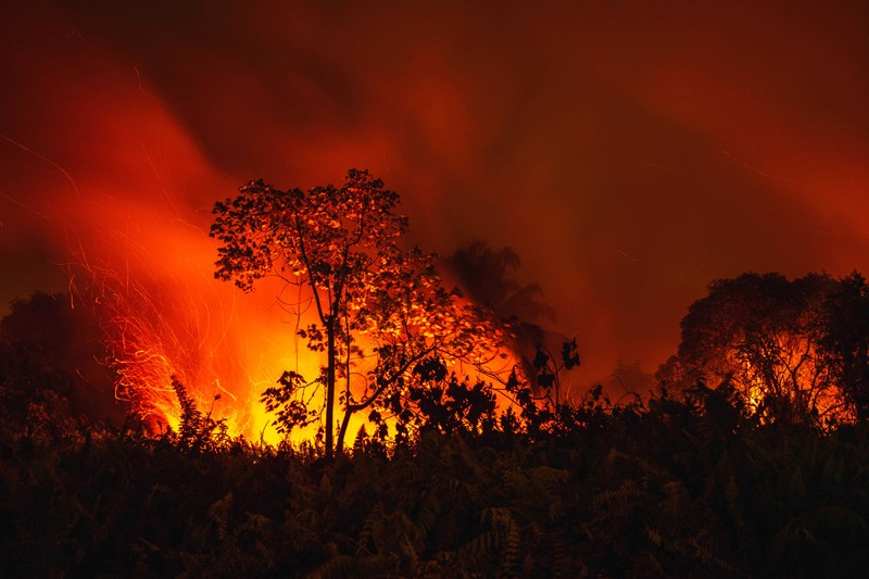A fire burns peatland and forest in Pekanbaru, Riau Province, Indonesia, 24 September 2019