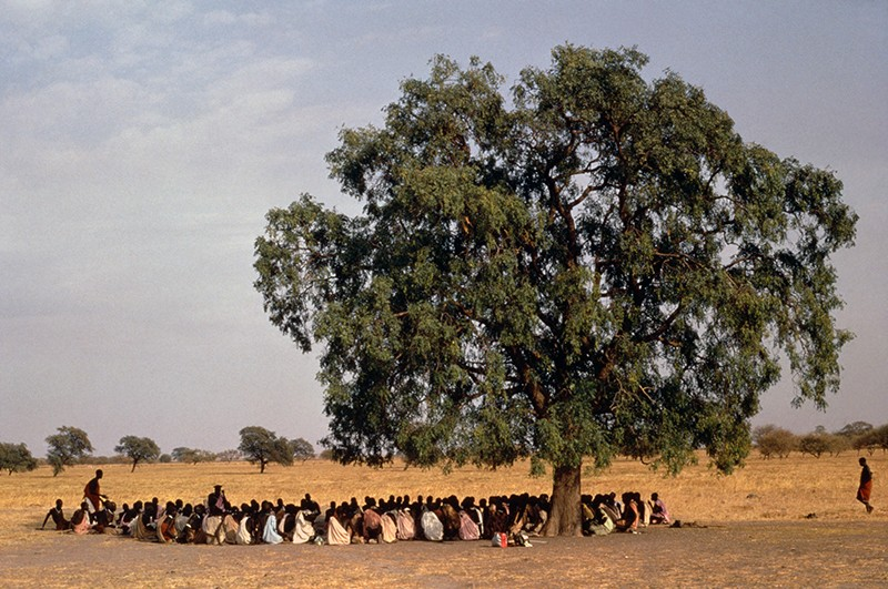 Shilluk tribes people gather in a circle under a large tree for traditional storytelling