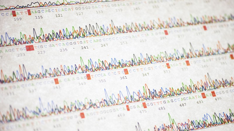 Poor DNA sequencing result.