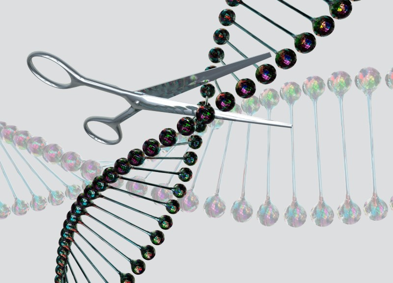 Go-ahead for first in-body CRISPR medicine testing