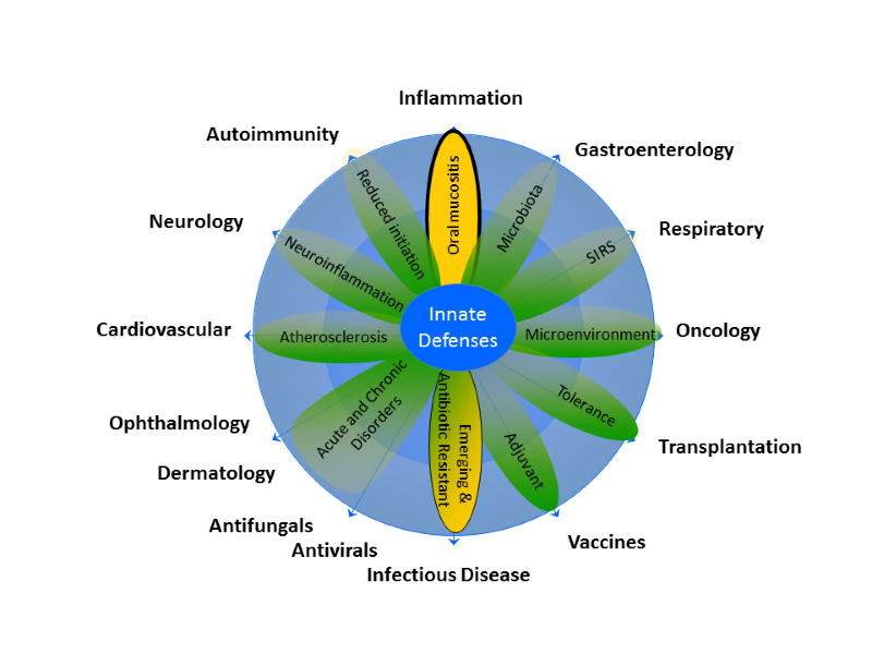 Innate immunity as an alternative immunotherapy approach
